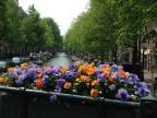 Amsterdam (May 2016)
